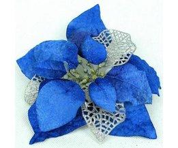 Blaue Weihnachtsblume
