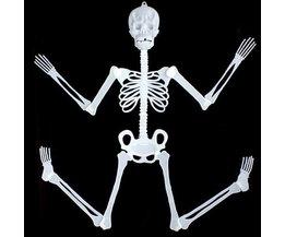 Luminous Skelette