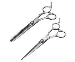 Barber Scissor Edelstahl