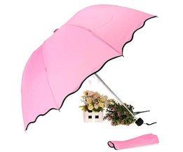 Regenschirm In Mehreren Farben