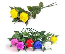 Luminous Rose (6 Stück)
