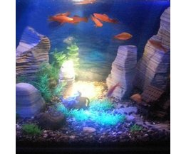 LED Lighting Aquarium