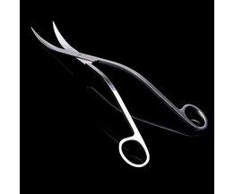 Curved Scissors For Aquarium