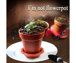 Muffin Pans Flowerpot