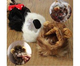 Animals Hat