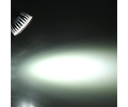 Dimmable LED Spotlights With Pure White Light
