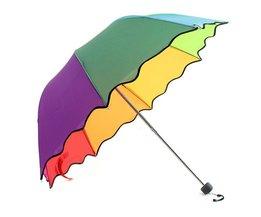 Umbrella In Multiple Colors