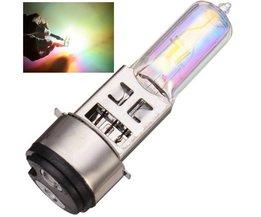 Xenon Lamp For Motor 50W Main Beam / Low Beam