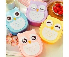 Lunch Box In Owl Shape
