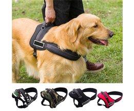 Dog Harness S
