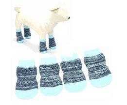 Socks Dog Slip