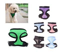 Dog Harness L