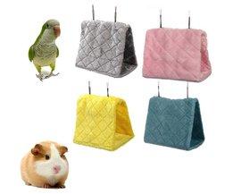 Hammock For Parrots (L)