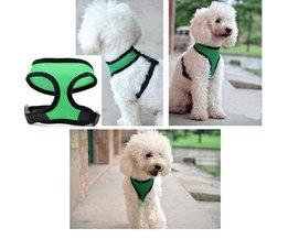 Harness Dog (M)