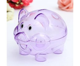 Piggy Bank Transparent Plastic Children