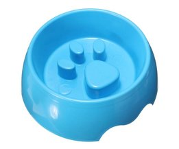 Enter Plastic Container For Dogs And Cats