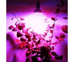 E27 LED Grow Lamp 3.8 W