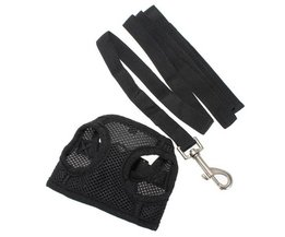 Dog Harness With Belt S