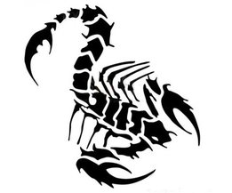 Scorpion Car Sticker In Multiple Colors
