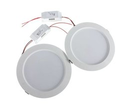 Cheap Ceiling Lamps In 2 Colors