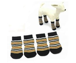 Striped Dog Socks