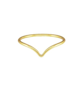 Bo Gold Ring - Goud