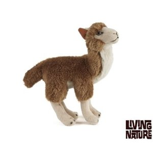 Living Nature Lama
