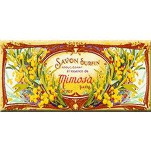 Cartexpo Metalen poster Mimosas 17,50 x 45 cm