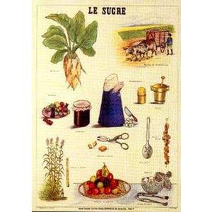 Cartexpo Schoolkaart suiker 50x70