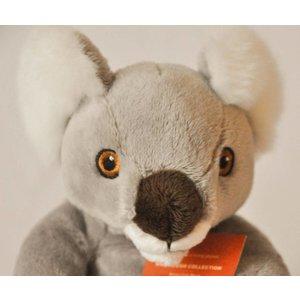 Anna Plush Baby koala
