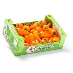 Tommies Doos snackpaprika's  1kg