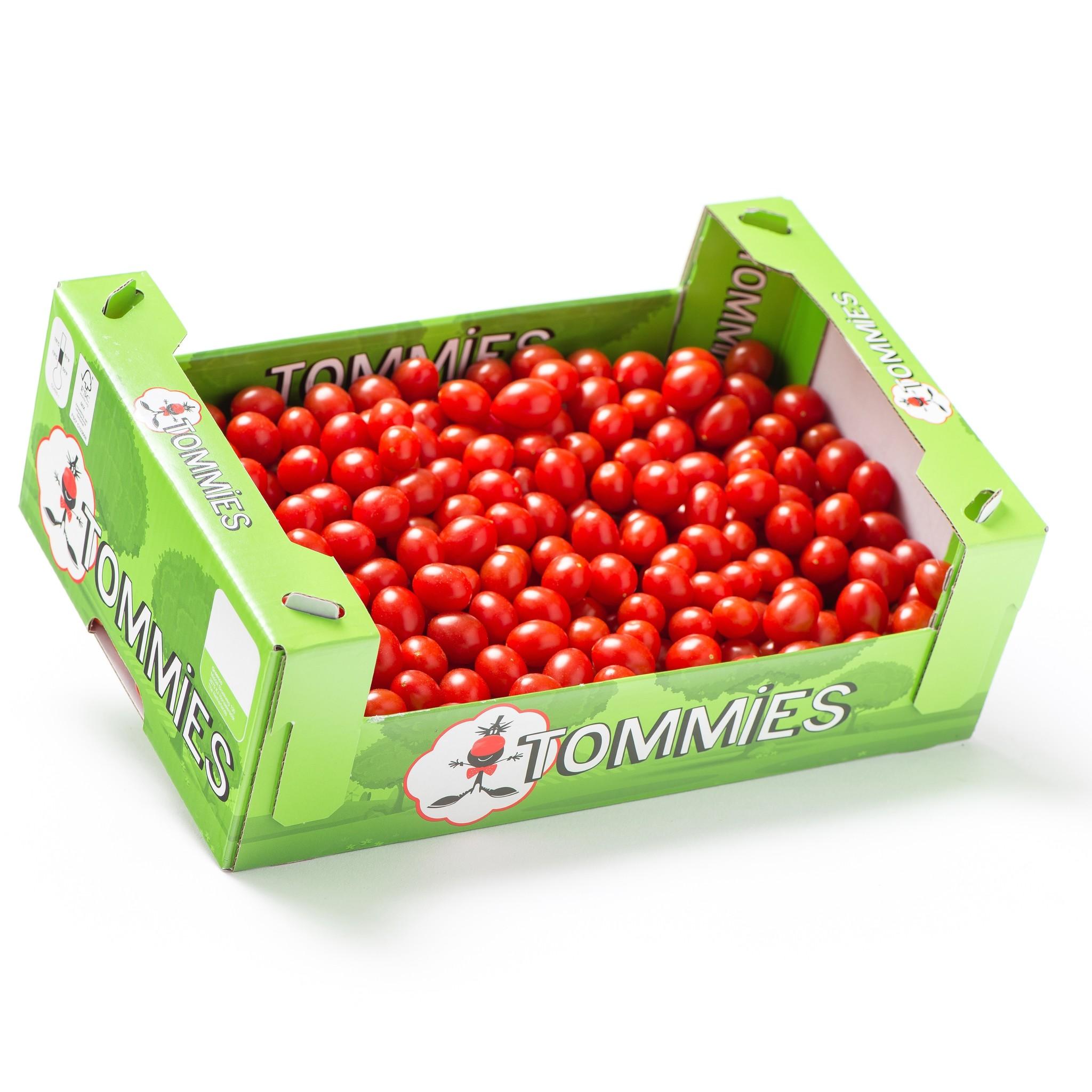 Tommies Tommies Mini Toppers doos 1,5 kg