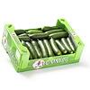Tommies Doos komkommers 30 stuks