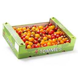 Tommies Mix 3 kleuren doos 4kg