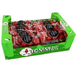 Tommies Uitdeeldoos - 15 zakjes a 80g