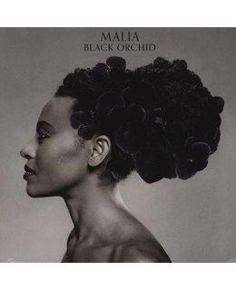Malia Black Orchid