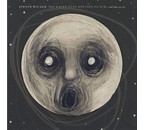 Steven Wilson -Raven That Refused To Sing (And Other Stories )