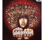 Erykah Badu New Amerykah: Part One (4th World War)