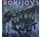Bon Jovi Slippery When Wet