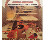 Stevie Wonder Fulfillingness' First Finale