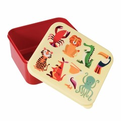 Rex International Rex Brotdose Lunchbox Wilde Tiere