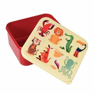 Rex International Rex Brotdose Lunchbox Wilde Tiere