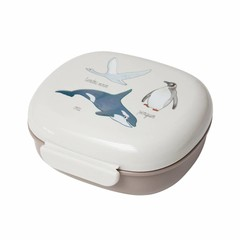 Sebra Sebra Lunchbox Brotdose arktische Tiere