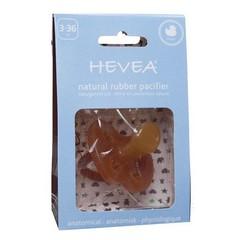 Hevea Hevea Schnuller Ente ab 3 Monate | Kiefergerecht