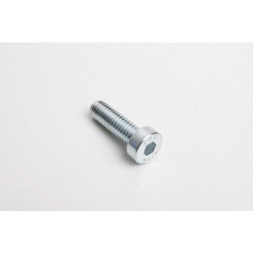 PP Tuning Inbus Bout DIN7984 M8 Voor Rem-Koppelinghevels