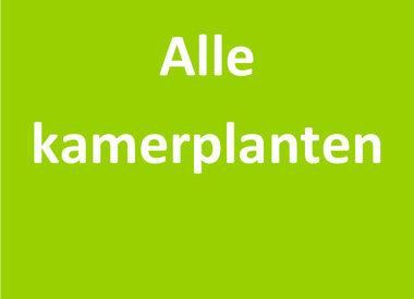 Alle kamerplanten