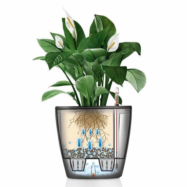 Lechuza Anthurium lechuza classico watergevende pot