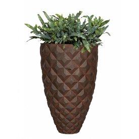 Fleur.nl -Capi Phlebodium in stoere pot
