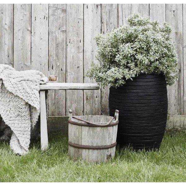 Capi Nature Row Vase Elegant Deluxe Ø 39