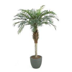 Fleur.nl - Phoenix Palm - kunstplant
